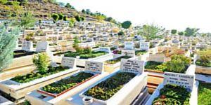 'Suriyelilere özel mezarlık' iddiasına açıklama
