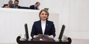 Zeybek, Hürriyet'i eleştirdi