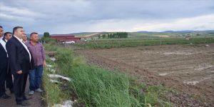 Dolu ekili arazilere zarar verdi