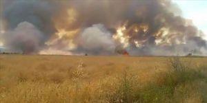 Elazığ'da 500 dönüm ekili tarla yandı