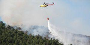 Eyüpsultan'da orman yangını