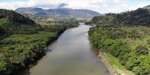 Amazon Watch İcra Direktörü Salazar-Lopez: Amazon yerlileri tarihin en ağır saldırısı altında