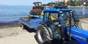 10 kamyon yosun toplandı