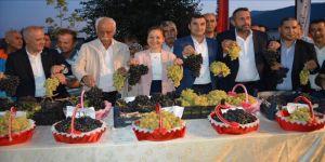 İslahiye Üzüm ve Biber Festivali başladı