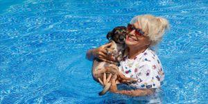 Havuzlu villasını 85 köpeğe açtı