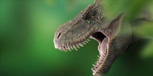 T-Rex'lerin kafataslarında klima işlevi gören delikler keşfedildi