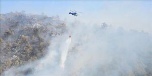 Tarım ve Orman Bakanlığından yangın açıklaması