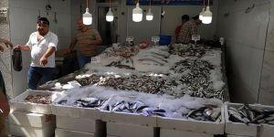Balıkçıların 'palamut' hasreti devam ediyor