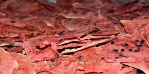 ABD ve Avrupa'ya cips formunda kavun karpuz ihracatı