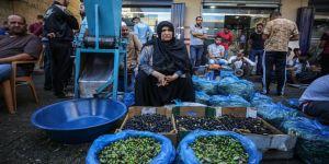 Gazze'nin kaliteli zeytinleri 50 yıldır Han Yunus'ta görücüye çıkıyor