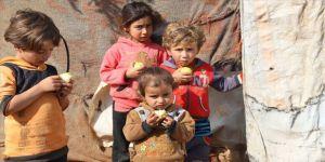 Suriyelilere 21 ton meyve dağıtıldı