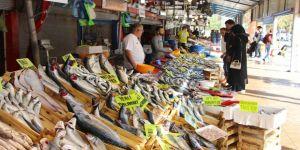 Bandırmalı balıkçılar palamut ve lüfere hasret