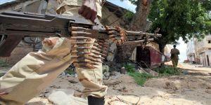 Somali'den BMGK'nin silah ambargosu kararına tepki