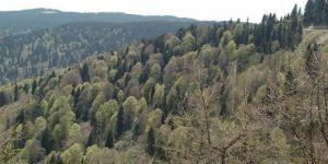 50 yılda erozyonla taşınan toprak miktarı yüzde 70 azaldı