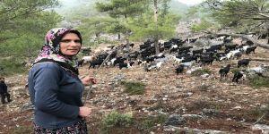 Yörük Songül Uçar'ın en büyük mutluluğu keçilerinin karnının doyması