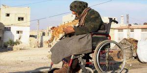 Kedilerin annesi İdlib'deki bombardımandan tekerlekli sandalyesiyle kaçtı