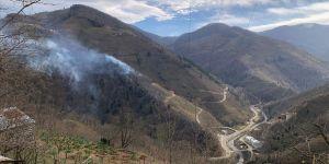 Valilikten Giresun'daki örtü yangınlarıyla ilgili açıklama