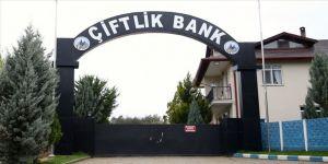 'Çiftlik Bank' davasında firari sanık Niyazi Karakoç duruşmaya gelerek savunma yaptı