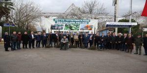 250 çiftçiye, 20 bin ceviz ve hurma fidanı dağıtıldı
