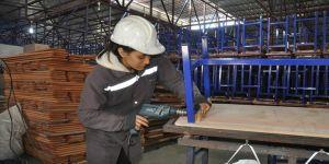Cirosu 8 milyon lirayı geçen 'üretim lideri' okulda hedefler büyüdü