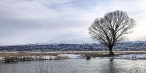 Türkiye'nin en büyük milli parkı beyaza büründü