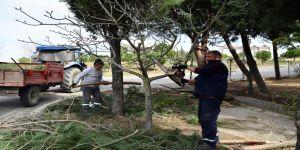 Park ve Bahçeler Müdürlüğü'nde bahar hazırlıkları sürüyor