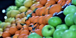 İdari para cezalarında ilk sırayı 156,7 milyon lirayla gıda ve tarım sektörü aldı