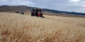 Bitkisel üretim desteklerinin son başvuru tarihleri uzatıldı
