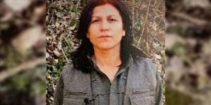 PKK'nın kadın yapılanmasının sözde üst düzey sorumlularından Halide Tarı etkisiz hale getirildi
