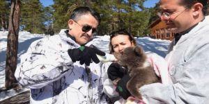 Bakan Pakdemirli ayı yavrusunu biberonla besledi