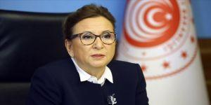 Ticaret Bakanı Pekcan: Şu anda yaklaşık 7 bin 400 firma daha inceleme altında
