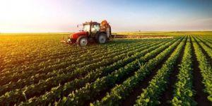 Ekim yapılabilecek 21 ilde tohumun yüzde 75'i üreticiye hibe olarak verilecek