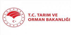 Tarım ve Orman Bakanlığından COVİD-19 Türkiye Web Portalı'na destek