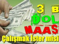 3 Bin Dolar Maaşla Çalışmak İster misiniz?