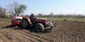 Trakya çiftçisi koronavirüse rağmen ürün ekim ve hasatlarını yapıyor