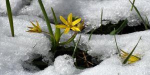 Kars'ta etkili olan kar güzel görüntüler oluşturdu