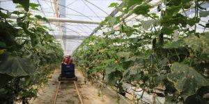 Çiftçilerin üretim mesaisine ramazan düzenlemesi