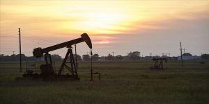 Brent petrolün varili 20,50 dolar