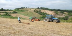 Büyükşehir'in yüzde 50 hibeli tohum desteği çiftçilere ulaştırıldı