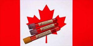 Kanada'da Kovid-19'dan ölenlerin sayısı 4 bin 348'e yükseldi