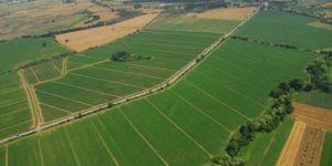 Kocaelili çiftçiler üretiyor,Büyükşehir destekliyor