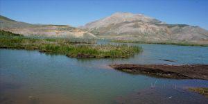 Adıyaman'daki yüzen adaların bir kısmı kıyıya yaklaştı