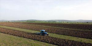 Karabük'te tarımsal üretimde yüzde 20 artış bekleniyor