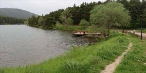 Milli ve tabiat parkları 1 Haziran'da yeniden açılıyor