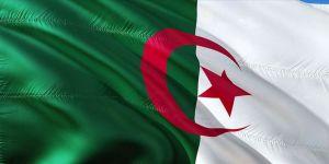 Cezayir bölgedeki stratejik gelişmeler ışığında ordunun rolünü yeniden tanımlıyor