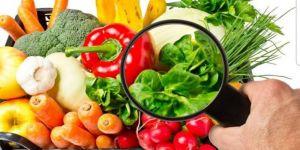 TMMOB Gıda Mühendisleri OdasıKocaeli,''Gıda Mühendisi Halkın Sağlık Güvencesidir''