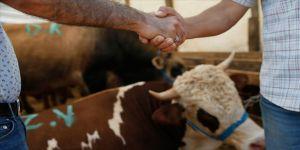 Kurban Bayramı ve öncesinde hayvan satış yerlerine yönelik önlemler belirlendi