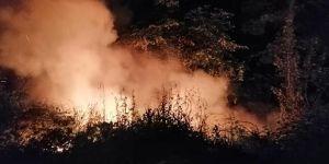 Ormanlık alanda yangın çıktı !
