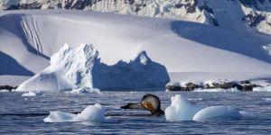 Antarktika'da Çevre Koruma Protokolü'nün Uygulanmasına Dair Yönetmelik yayımlandı