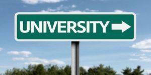 Westline Yurtdışı Üniversite Seçenekleri